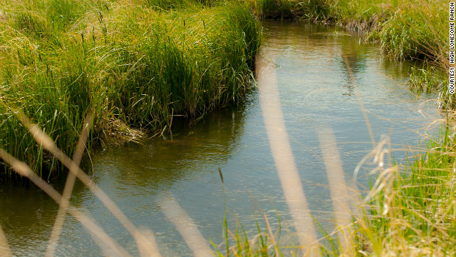 Fly-fishing is one of the many activities available at High Lonesome Ranch.