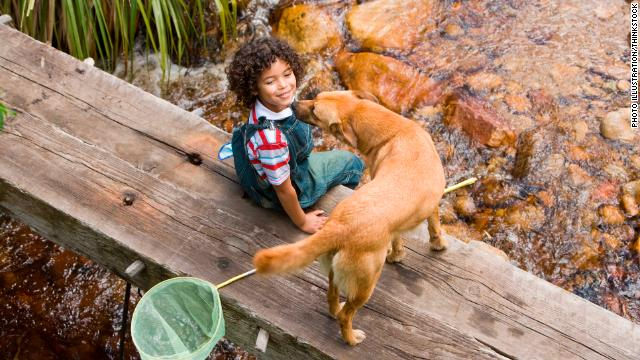 How do you help a child get past a dog bite?