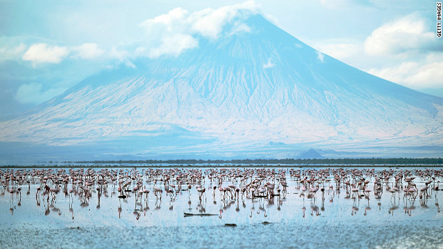 Lesser flamingoes at the Lake Natron at the foot of Ol Doinyo Lengai.