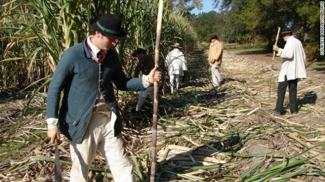 "Workers at Middleton Place demonstrate the sugar cane harvest during ""Plantation Days"" at the historic landmark."