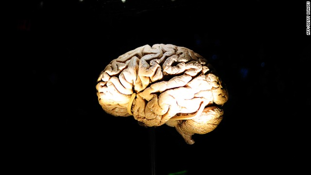 Brain model may help build human-like robot