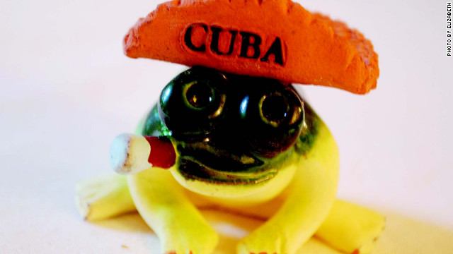 Revolutionary smoking frog with taco hat.
