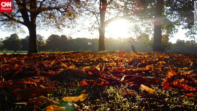 Autumn leaves carpet the lawn of London's <a href='http://ireport.cnn.com/docs/DOC-852986'>Victoria Park</a>.