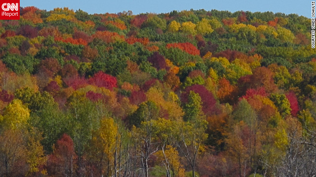 The forest canopy of <a href='http://ireport.cnn.com/docs/DOC-852131'>Kettle Moraine, Wisconsin</a>, features daubs of nearly every fall color.