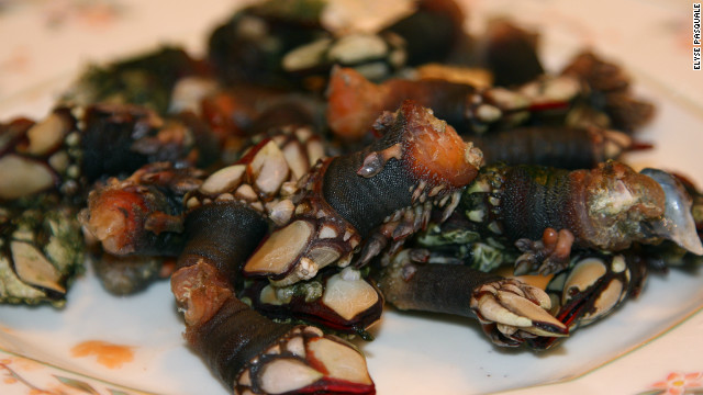 An appetizing plate of goose barnacles on display at a restaurant in San Sebastian, Spain. The compact northern Spanish city has a reputation for fine dining, playing host to seven Michelin star restaurants.