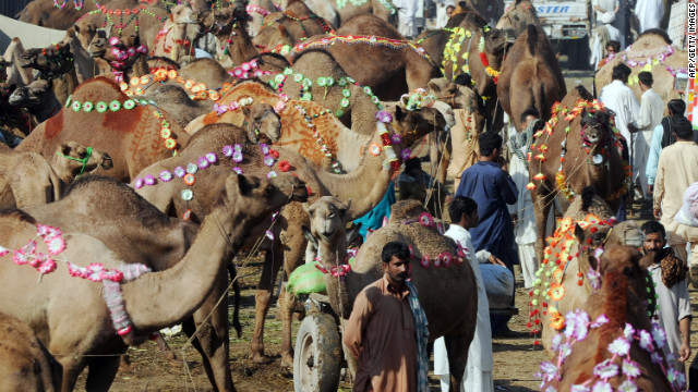 Pakistani men wait for customers at a livestock market ahead on Thursday in Lahore.