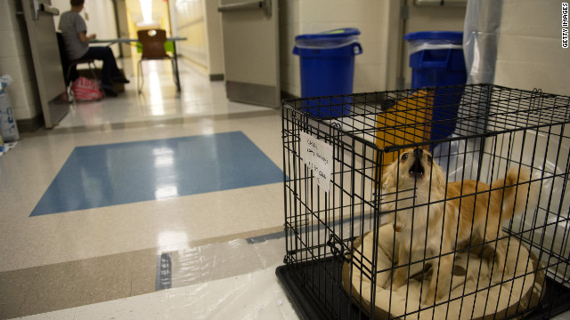 While taking shelter in Cap Henlopen High School hallway, Kathy Florczyk's dog Casey barks from his crate as the Delaware residents wait for Hurricane Sandy.