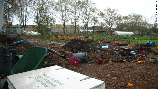 CSI: CSA – After Sandy, a community rallies around a ruined farm