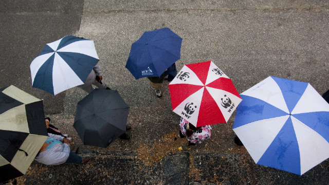 Rain did no deter voters from waiting in line in St. Petersburg, Florida. The Sunshine State -- with its 29 electoral votes -- was a key player in determining the next president.