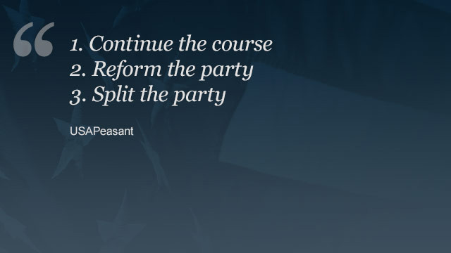 "Commenter USAPeasant took a slightly different approach, sharing what they believe the GOP ""can"" do. View entire comment"