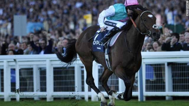 """Frankel was a cracking name -- it jumped out of the microphone,"" says racing commentator Cornelius Lysaught. The superstar colt, who recently retired after an unblemished 14-win career, scooped the main prize at the 2012 UK Horse of the Year awards."