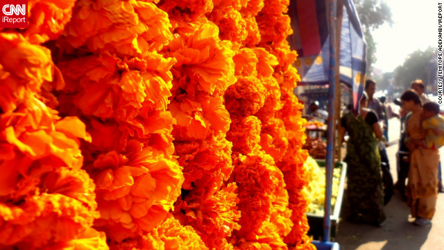 "The vibrantly colored flowers in this picture, captured in Secunderabad, India, display the electrifying energy that Diwali brings, says iReporter <a href='http://ireport.cnn.com/people/giveagalapal'>Temitope Adekanbi</a>. ""The cultural emphasis [of] the idea of 'good trumping evil' through the use of bright colors, firecrackers, lights, and lamps, I believe, add a powerful and magical element to the day,"" she says.<br/><br/>"