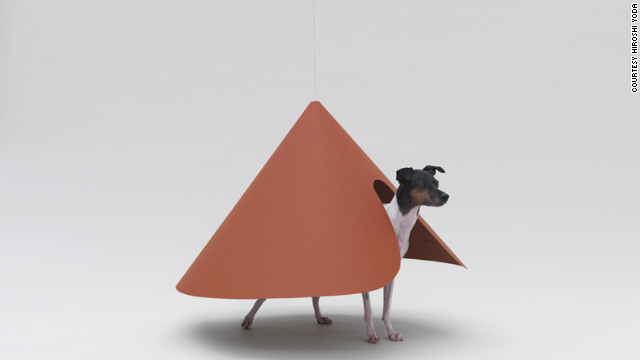 &quot;Pointed T&quot; by NDC/Haruka Misawa for a Japanese Terrier.
