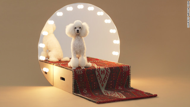 The Architecture for Dogs website, launching on 15 November, will supply free blueprints for 13 different DIY doghouses, each earmarked for a particular breed. '&quot;Paramount&quot; was designed by Konstantin Grcic for a Toy Poodle.