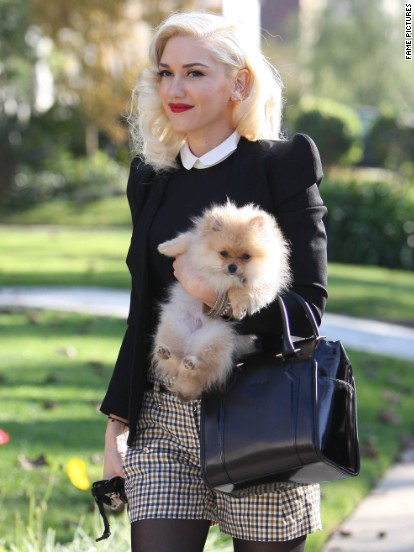 Gwen Stefani strolls with her dog while out with her family in Los Angeles on November 22.