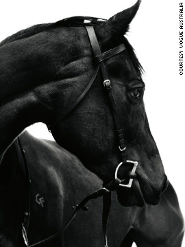 The $7 million horse was photographed by Australian Benny Horne in a secret location in the Dandenong Ranges, just outside of Melbourne.