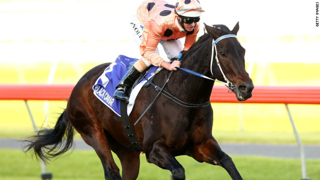 Australian mare Black Caviar may have been out of action for eight months, but she still remains one of the top-rated race horses in world, boasting an unblemished 22-win record.