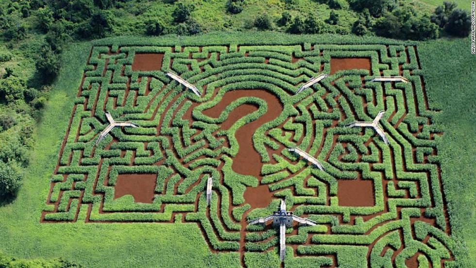 Davis Mega Mystery Maze, EE.UU.
