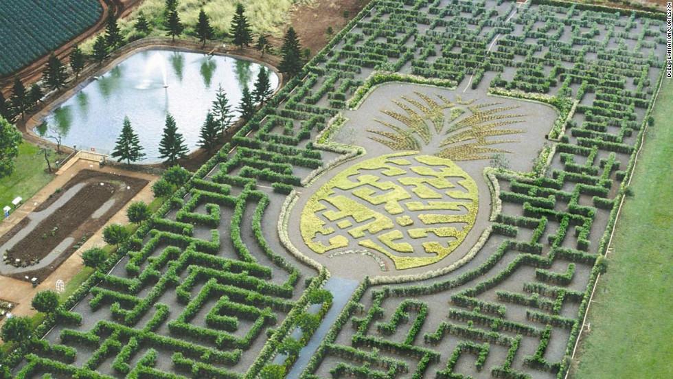 Laberinto de plantación de piña Dole, Hawaii
