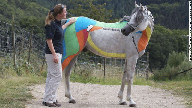 Horses have more than 700 muscles, and Higgins color-coordinated each one according to its action.
