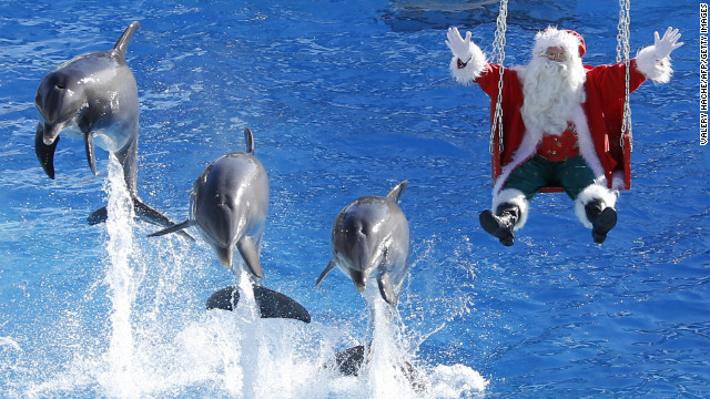 Santa auditions an alternative species to pull his sleigh at the Marineland park in Antibes, France, on Wednesday, December 19.