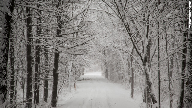 Snow sticks to the trees along Levee Road during a winter storm December 20 in Baraboo, Wisconsin.