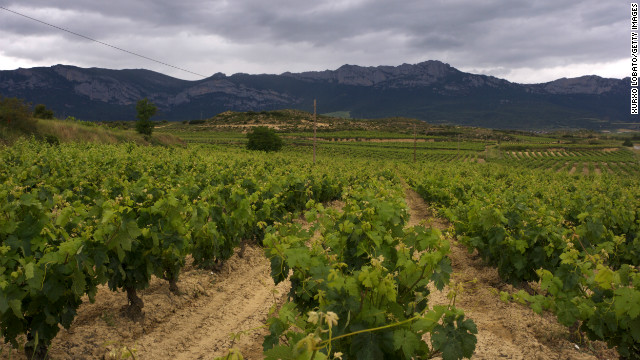 And this year's best wine destinations are...