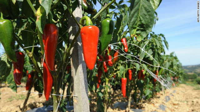 These peppers look tough now. But they'd probably quake in fear of the Infinity pepper, in the