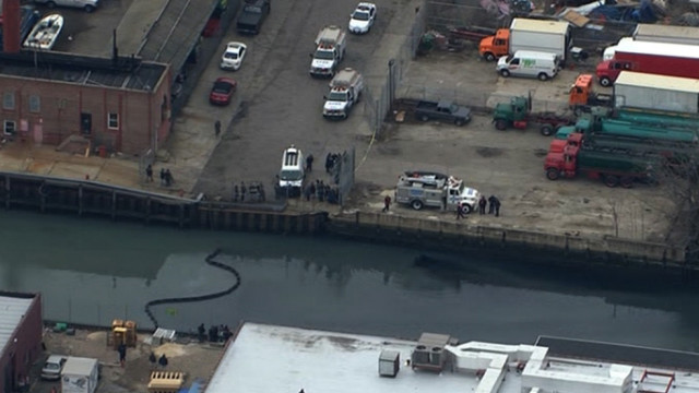 Rescuers: Dolphin stranded in polluted New York canal dies