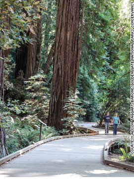 William and Elizabeth Kent bought the redwood forest near San Francisco, named it to honor writer and wilderness champion John Muir and donated the land to the federal government in 1908 to protect it from development.