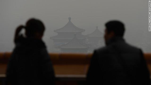 China's green warriors