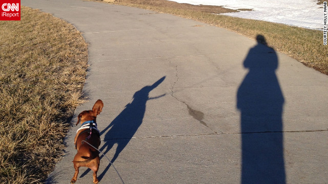 "iReporter Holly Naab shot this photo of her and her puppy, Frank, at a park in Elkhorn, Nebraska. ""I'm hoping for an early spring, so Frank can get outside more,"" she said."