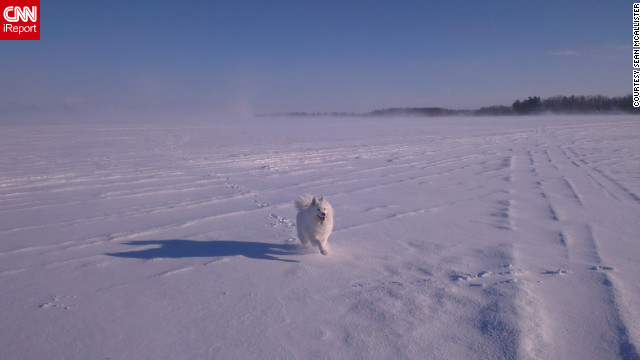 Mia, a 5-year-old Samoyed, &lt;a href='http://ireport.cnn.com/docs/DOC-921143'&gt;races across a frozen lake&lt;/a&gt; in Hudson, Quebec, in this shot taken by Sean McAllister on January 20.