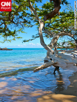 """This beach is one of the hidden gems of the Big Island of Hawaii,"" said Jessica Garcia of <a href='http://ireport.cnn.com/docs/DOC-803808'>Wailea Bay</a>. ""The water was the most beautiful turquoise I'd ever seen."""