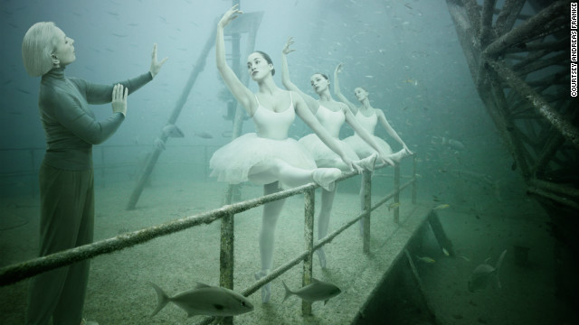 Underwater gallery brings life to wreck