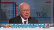 Sen. Leahy on immigration reform proposals