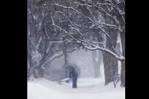 Tormenta de nieve golpea las llanuras