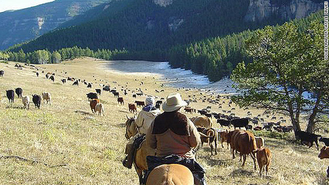 Wyoming's Doublerafter Cattle Drives offers 