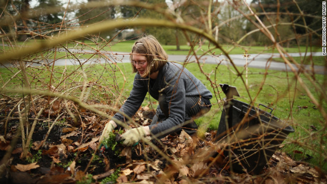Gardener Ruth Calder clears weeds and dead leaves at Kew Gardens on March 1 in Kew, England.