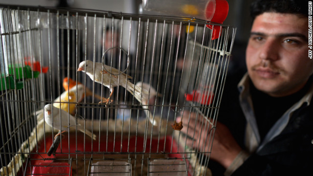 A man shows off his pet birds as new Syrian refugees arrive at the International Organization for Migration at the Za'atari refugee camp on January 30.