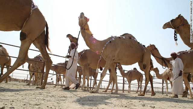 The festival is intended as a way of preserving aspects of Bedouin cultural heritage that face the threat of being lost as the Emirates continues to rapidly modernize.