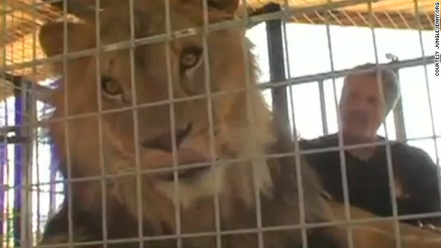 Lion kills woman at California sanctuary