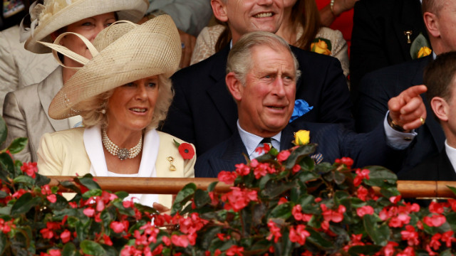 Britain's Prince Charles and Camilla, the Duchess of Cornwall, soak up the atmosphere at Australia's Melbourne Cup. Owning a thoroughbred has long been the luxury hobby of the mega rich. But an increasing number of &quot;Average Joes&quot; are also entering the elite industry.