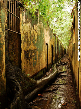 Breaking in, not breaking out. The jungle encroaches upon the abandoned cells on Ile St. Joseph, French Guiana.