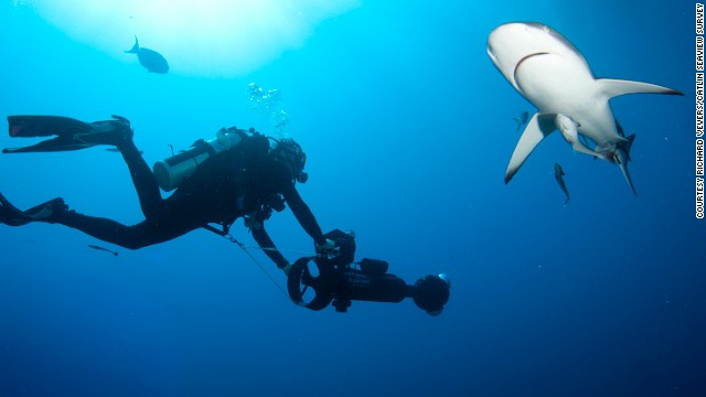 Join Cousteau for a Twitter chat immediately after the show. Post your questions to the CNN Special Correspondent here <a href='https://twitter.com/search/cousteauCNN' target='_blank'>#CousteauCNN</a>
