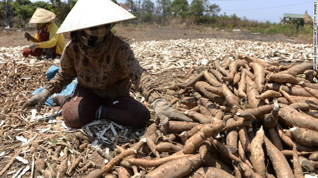 Workers chop cassava along a highway in a drought-hit area in Vietnam's central highlands province of Gia Lai.