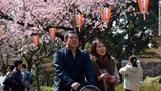 Viewing the sakura is so popular that at most of Tokyo's best cherry blossom parks, wannabe picnickers need to arrive by 8 a.m. just to reserve some turf.