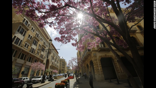 People walk past blooming trees on a street in the center of Lebanon's capital, Beirut, on March 18.