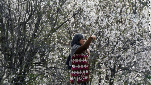 A woman takes a picture of the blooming almond orchards as spring arrives in Srinagar, Kashmir, on Monday, March 18.