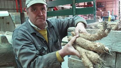 phil schmitt horseradish